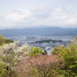 高知県の牧野植物園に行ってきた