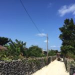3月の沖縄旅行〜石垣島・竹富島・与那国島〜の旅行プラン事前準備