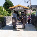 新田観光での水牛車