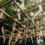 雨の日の川越氷川神社の風鈴祭りに参加してきた